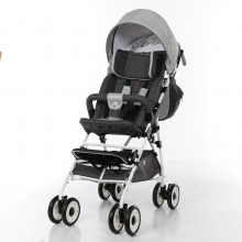 Прогулочная коляска Pegaz для детей с ДЦП (Пегас)